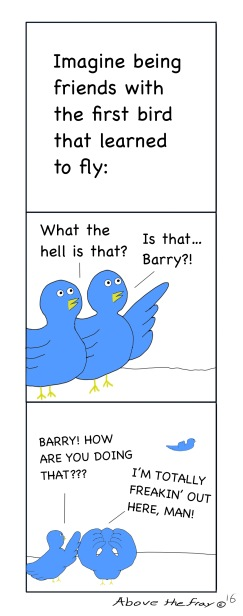 Barry the Bird 1