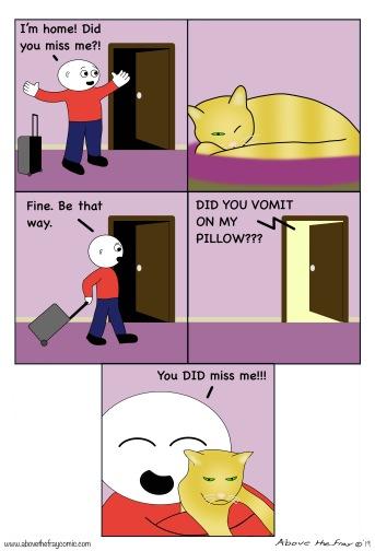 Cat pillow vomit